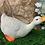 Thumbnail: Nosey Duck (medium)