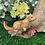 Thumbnail: Squirrel