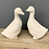 Thumbnail: Pair of ducks
