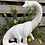Thumbnail: Brontosaurus