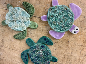 Coil Turtles