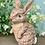 Thumbnail: Cute Bunny