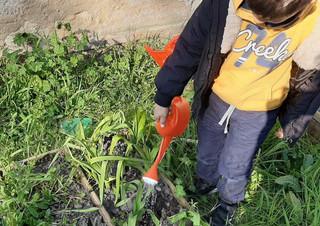 action 9 jardin-3.jpg