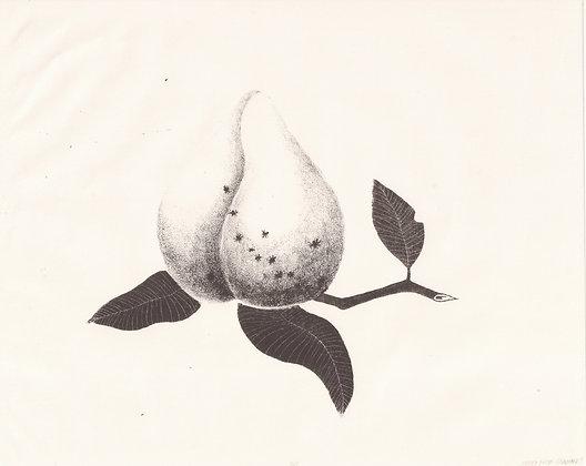 Peach Fuzz by Maya Chambers
