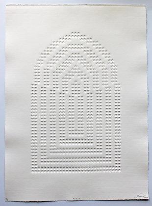 Focus by Soren Carlson-Donohoe