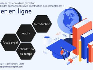 [Présentation à distance pour l'Association des archivistes français] sur la formation en ligne