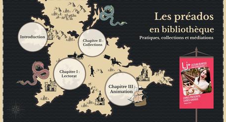 Animation BDP du Bas-Rhin : les préados aujourd'hui, un point sur les collections et les pratiques
