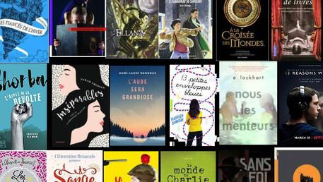 Formation stimulante sur les romans pour adolescents et les pratiques des lecteurs