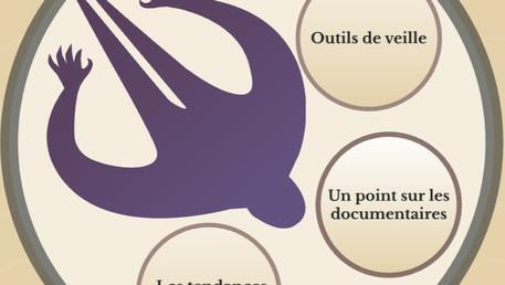 """[à distance pour Lecture Jeunesse dans la Somme] """"Les préados et leurs collections"""""""