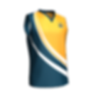 Cricket Vest Front.png