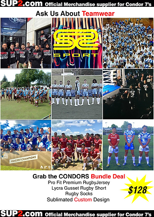 3RD PAGE CONDORS FLYER.png