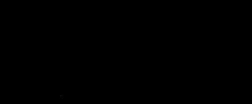 Schutzwall Logo Referenz.png