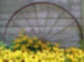 Wagon wheel with flowers.jpg