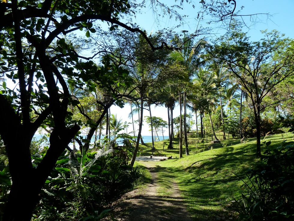 walk to beach.jpg