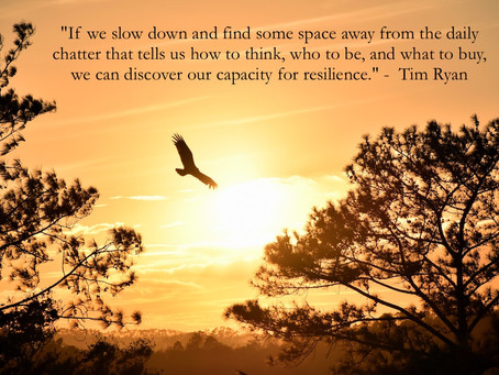 Introducing - The Art of Resiliency