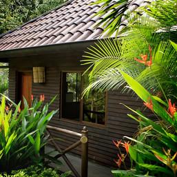 nature suite