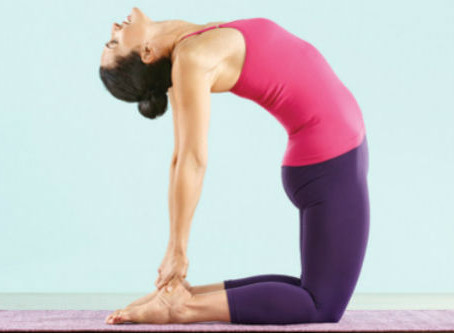 Pose of the month: Camel Pose (Ustrasana)