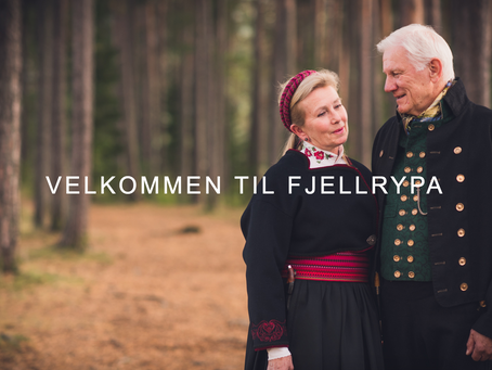 FJELLRYPA - HEDMARK