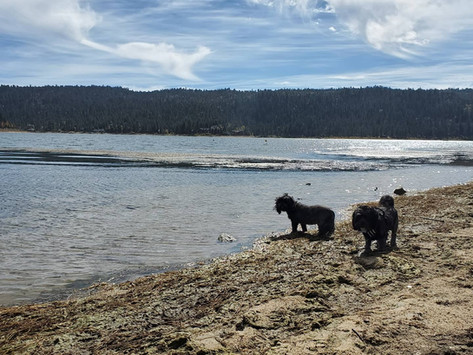 Destinations: Overnight in Big Bear for the First Time