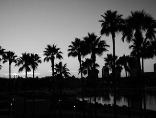 Long Beach Summer