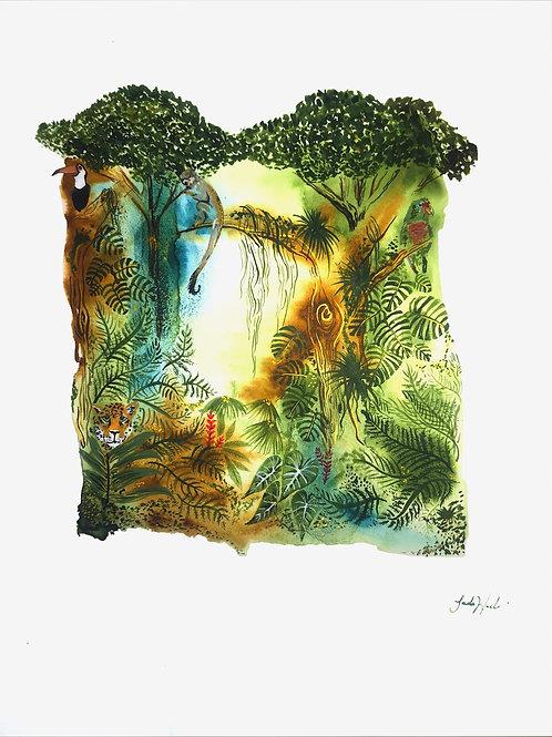 Tropical Rain Forest (ERC)