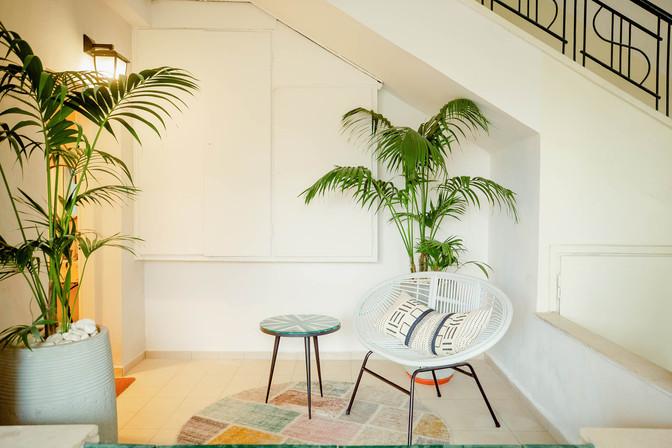 פינת ישיבה קלילה והרבה צמחייה, משנה את האווירה מיד כשמגיעים אל הדירה