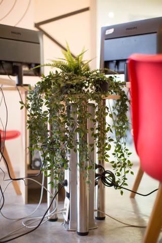 הסתרת הכבלים הרבים באמצעות צמחייה מלאכותית המחייה את החדר