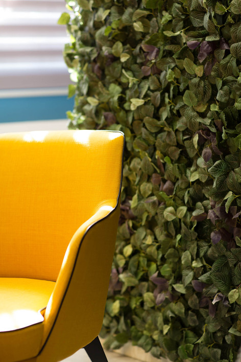 כורסא צהובה, ברקע קיר צמחייה