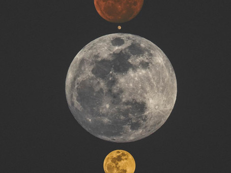 Eclipses: 6 Tips for Riding the (Lunar) Wave