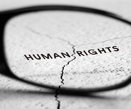 Workshop on Human Rights Due Diligence