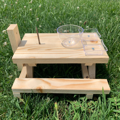 Natural Squirrel Picnic Table