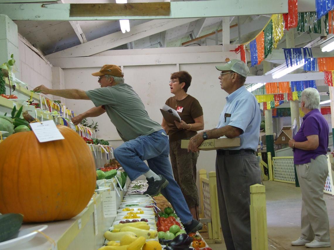 Burke County Fair