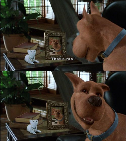 Image result for scooby doo movie hey that's me
