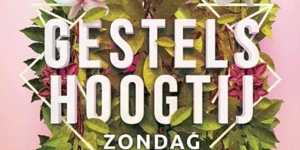 Gestels Hoogtij 2020