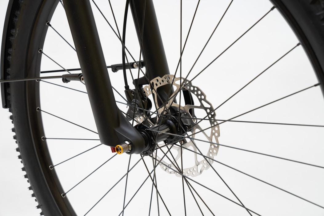 Simoes_Fahrrad_100.jpg
