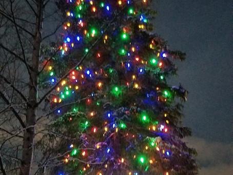 Holiday Lights at ABG!