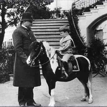 President Theodore Roosevelt posing with one of his children sitting on one of their pet ponies