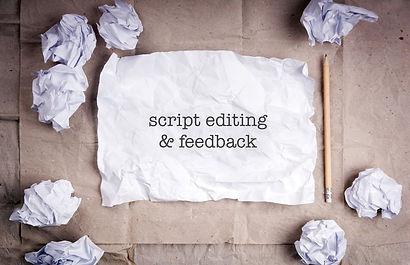 script editing & feedback.jpg