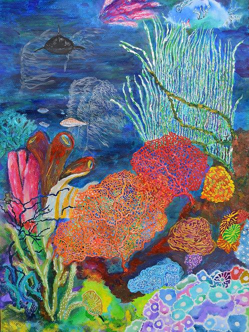 'Deep Reef'