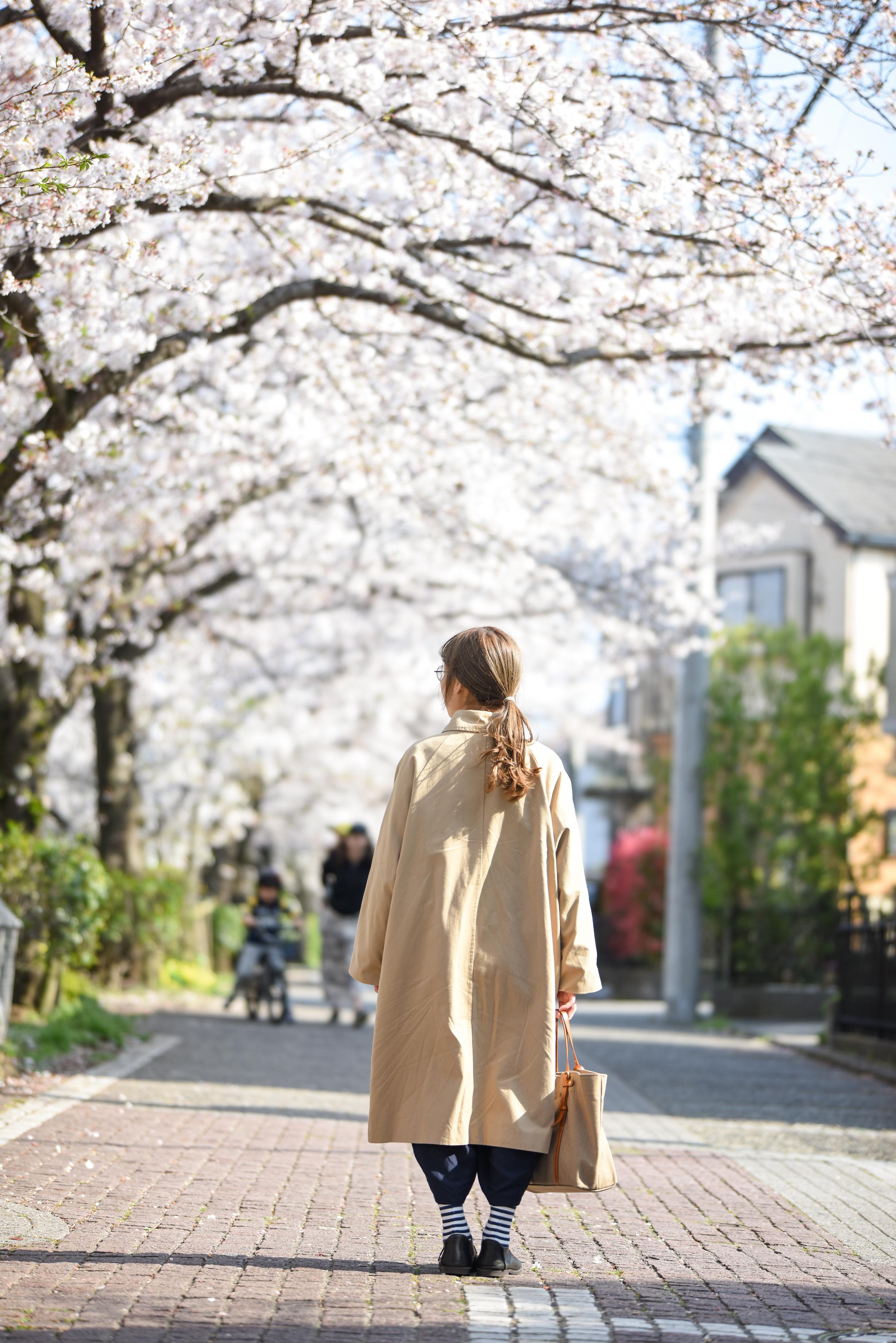 春、悲しい風は少し。