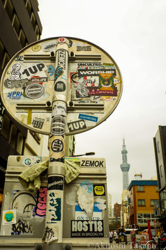 Art with Tokyo Sky tree