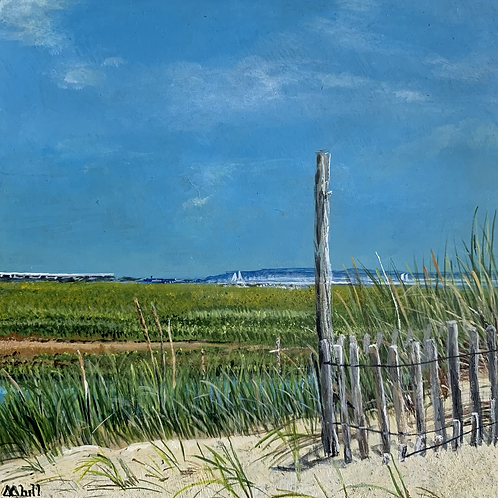View from the Dunes