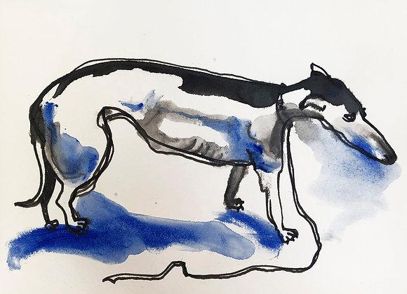 0082. The greyhound, Clara Schumann