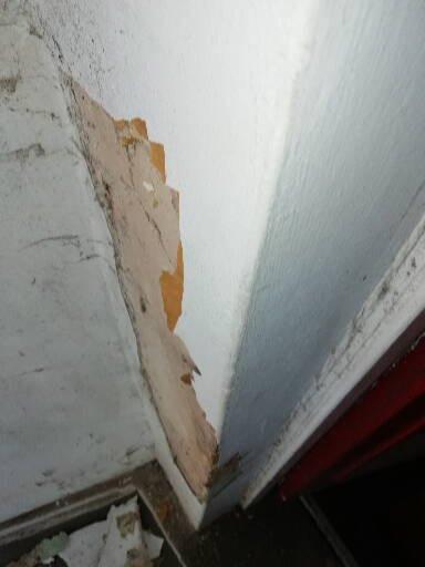 Damp damage.