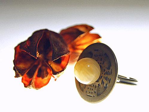アラゴナイトの古銭のリング