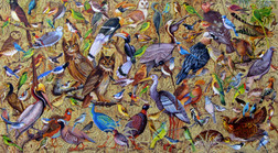 Shwe Kyaw Lin - A Thousand Birds