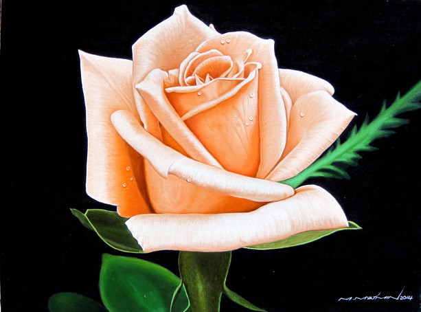 M. Myat Min - Rose 05