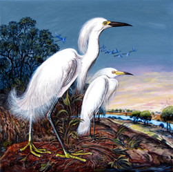 Shwe Kyaw Lin - Crane Couple