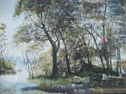 Htay Myint - Forest Trees