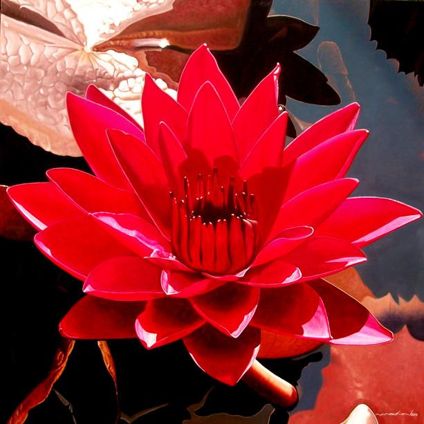 M. Myat Min - Red Lotus